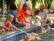 Малыши кормят рыбок в Парке 7 звезд в Гуйлине. Е. Касимова